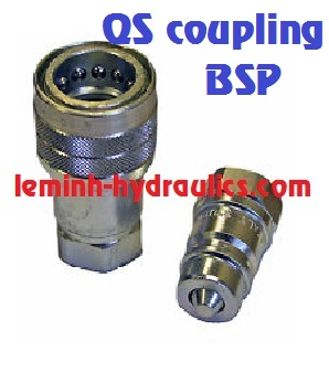 Manuli Quick Safe coupling BSP