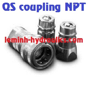 MANULI Quick Safe coupling NPT